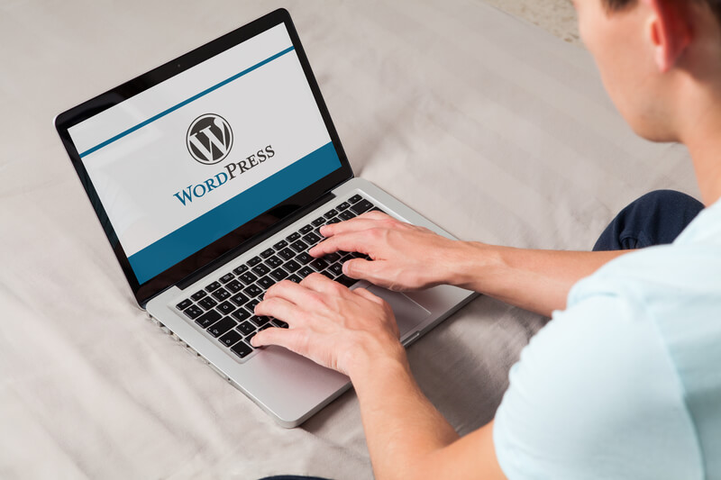 plugins-van-wordpress-checken